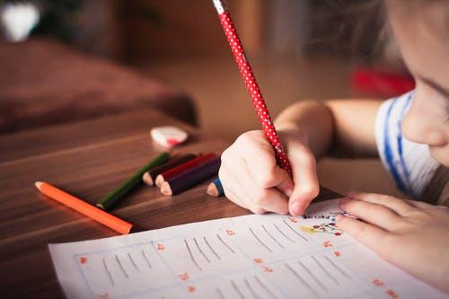 浙江成考考生如何选择学校和专业?